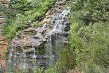 Bird Song Queen: Bushland Haven on National Park - Wentworth Falls - Talo
