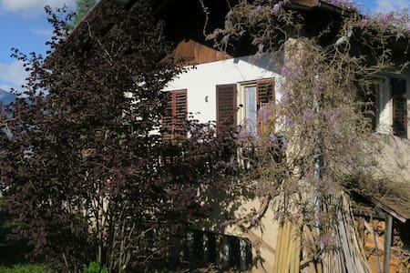 Appartamento spazioso e panoramico in casa rurale - Romeno - Huoneisto