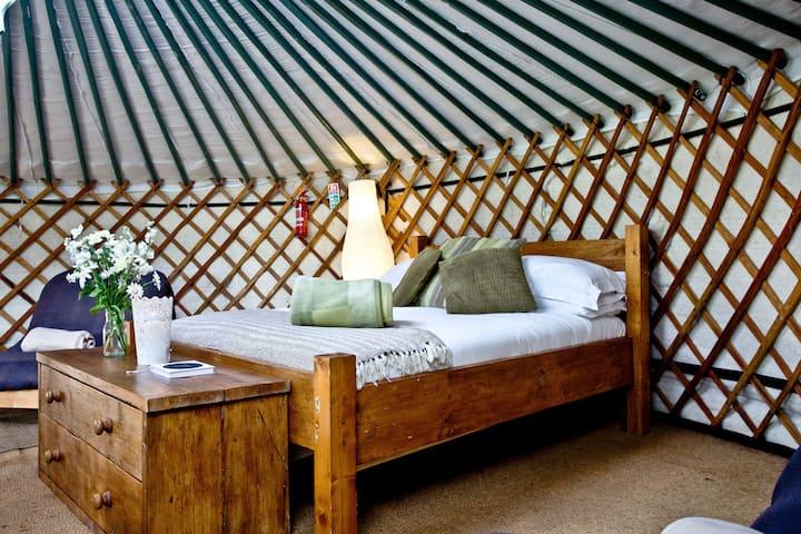 Yurt 3, East Thorne