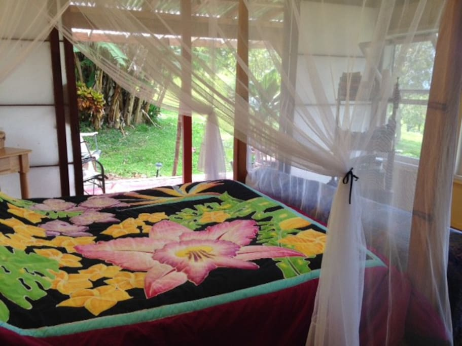 Comfortable queen sized bed with matching size mosquito net