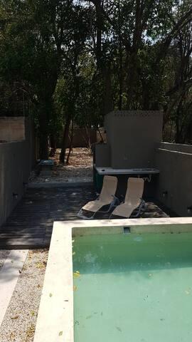 Alberca y jardín/ Swimming pool and garden