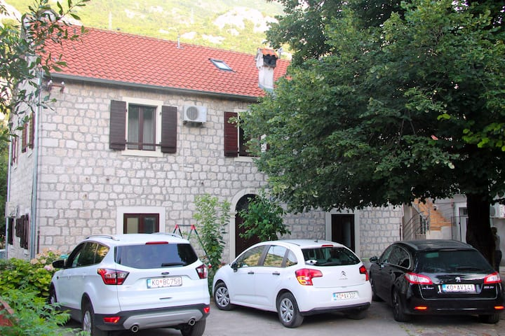 Comfortable apartment in old stone house Kotor