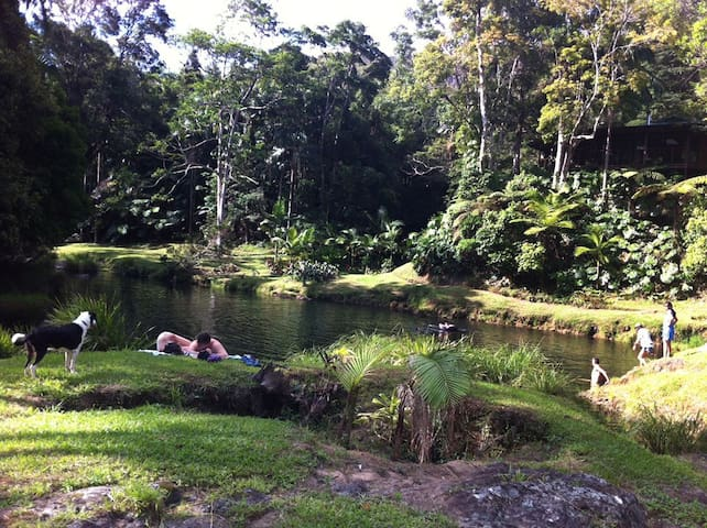 Anahata Waters: 2 Rooms in a rainforest retreat - Wilsons Creek