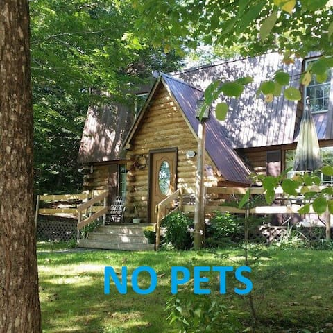 Burke Cabin on 18 Acres Very Close to Village