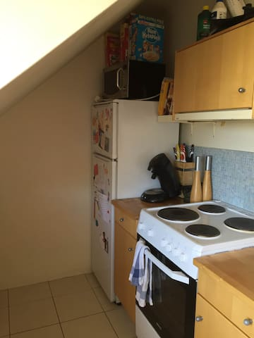 Beautiful small apartment in the capital. - Reykjavík - Byt