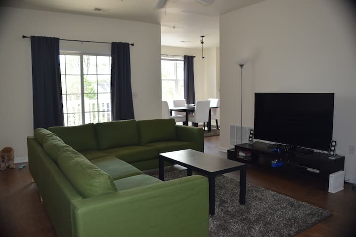 Spacious Apartment Minutes from DC Metro Station - Silver Spring - Leilighet