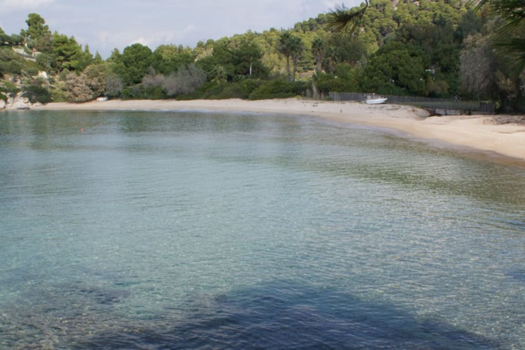 On of the most Beautifull Beaches of Halkidiki: Spathies