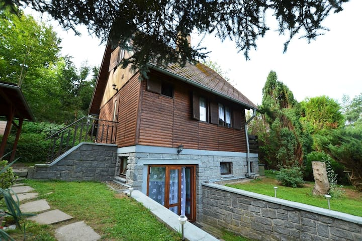 Cozy cottage with fireplace and private boat just 200 meters from the dam Orlik