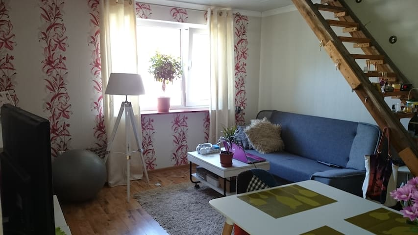 Comfortable studio in a quiet area - Pärnu - Dom