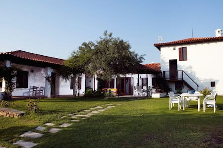 Exclusive Mediterranean Beachfront Property - Νικήτη - Villa