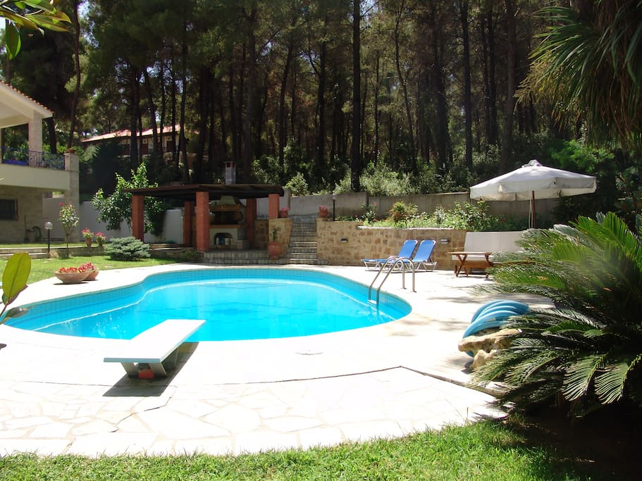 a shared swimming pool with sunbeds and armchairs around pool