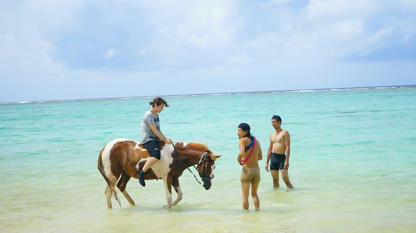 Horse riding experience! Muumin Bokujō Shared Room - Nakijin-son - Pondok
