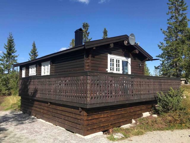 Herligheten ved Sundtjønn på Søre Vegglifjell