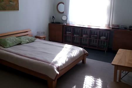 Apartment in Riga center - Riga - Wohnung