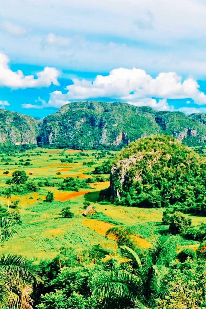 Valley of Viñales and its Mogotes!