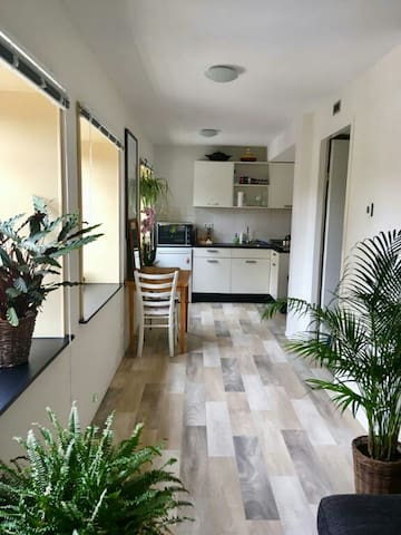 Cosy Appartment close to Westerpark and old centre