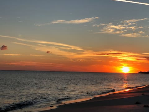Beach Front-Immaculate-Pet Friendly-Beach Paradise