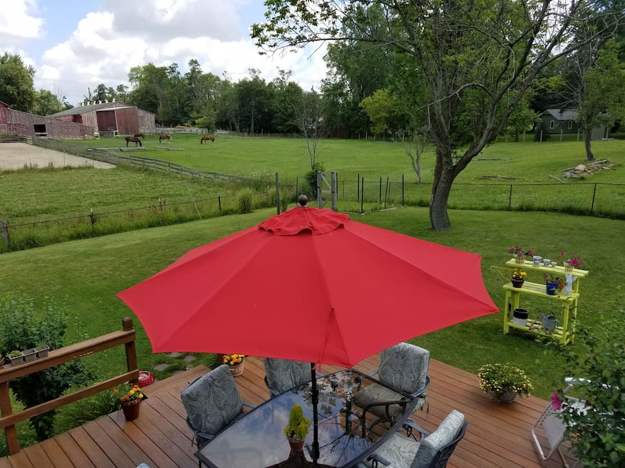 Enjoy County /like views on our deck