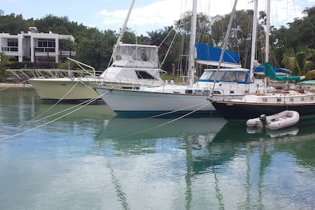 Classic Sailboat at Whitehouse - Black River - Boot