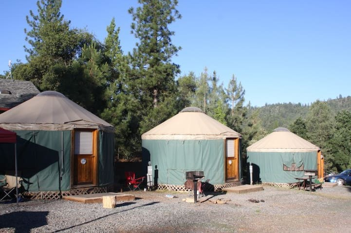 Yosemite Pines Resort Yurt