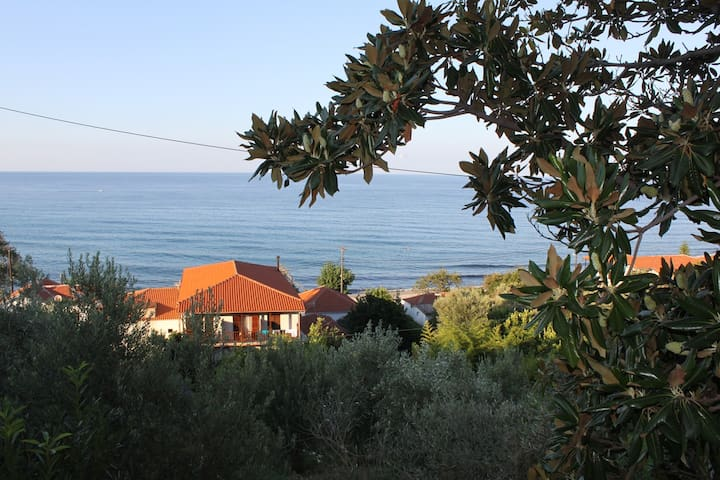 A comfortable house few meters from the beach