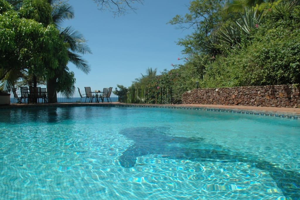 Large refreshing pool with partial shade from a mango tree
