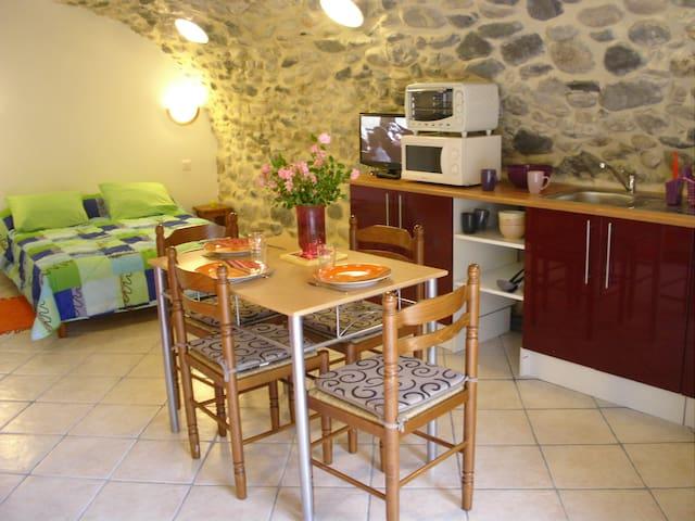 STUDIO EN PIERRE WIFI TERRASSE - Vals-les-Bains - Apartemen