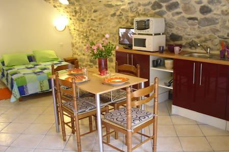 STUDIO EN PIERRE WIFI TERRASSE - Vals-les-Bains - Appartement