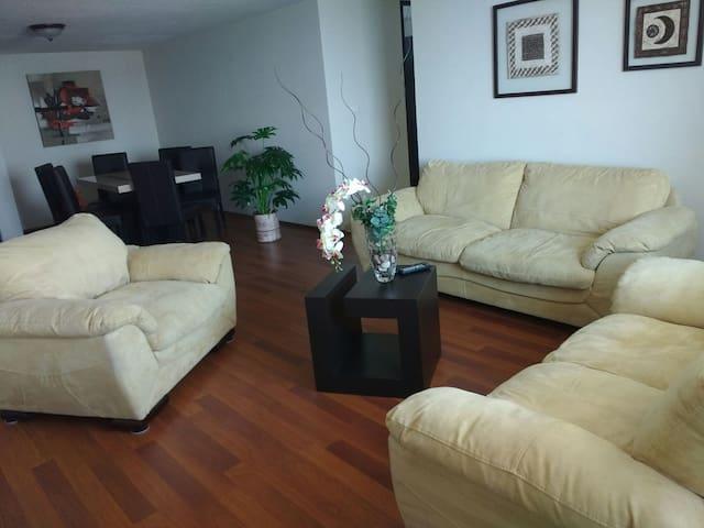 PENTHOUSE TOTALMENTE EQUIPADO, LA MEJOR UBICACION! - San Luis Potosí - Apartment