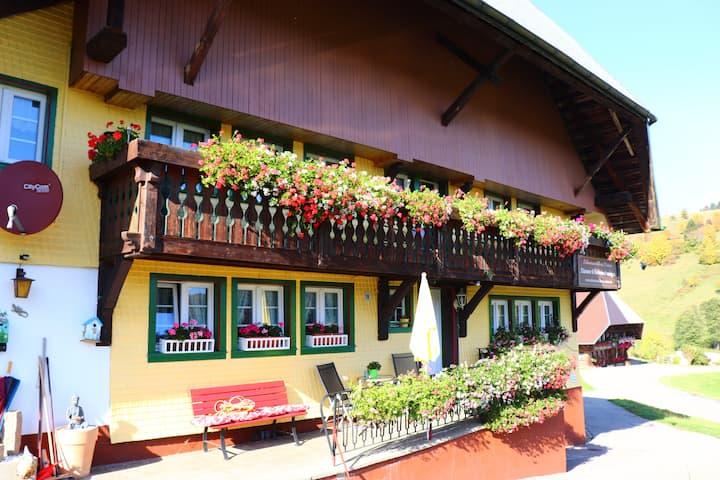 """Schwarzwaldhaus im sonnigen Todtmoos  """"Rose"""""""