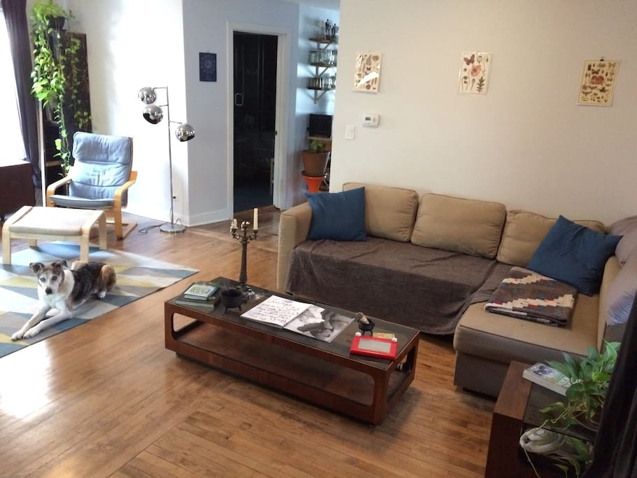 Living room - dog not included :)