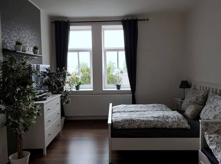 Krásný byt v centru Děčína