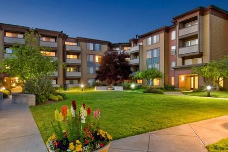 Emeryville Apartment - Emeryville