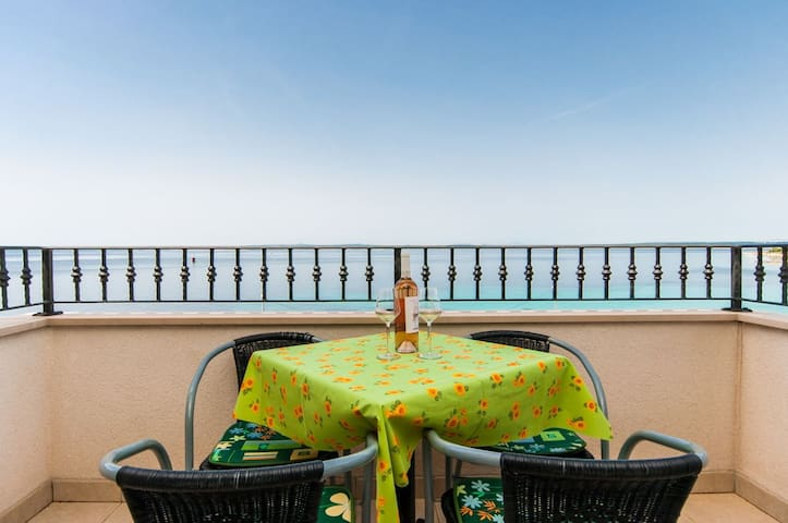 Studio Apartment, beachfront in Lun - island Pag, Outdoor pool, Terrace