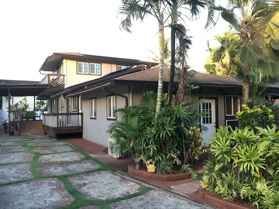 Your studio is the front part with private entrance and small tropical yard.