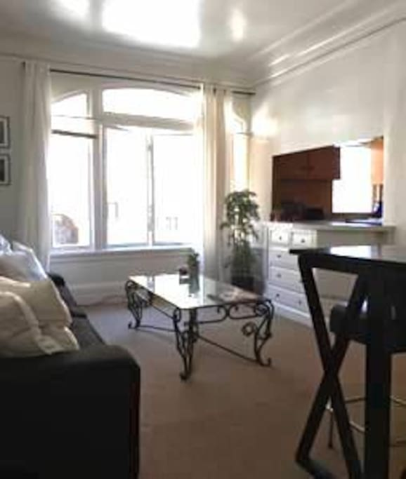 Classic Large Apartment In Heart Of Nob Hill