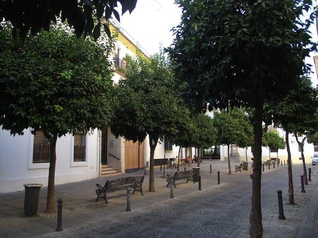Habitación privada en San Lorenzo - Córdoba - Daire
