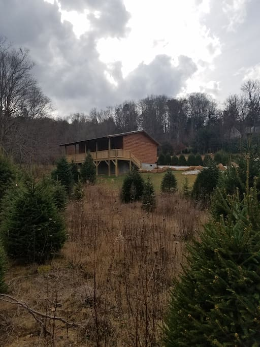 Mountaineer Cabin  Cabins for Rent in Banner Elk North Carolina
