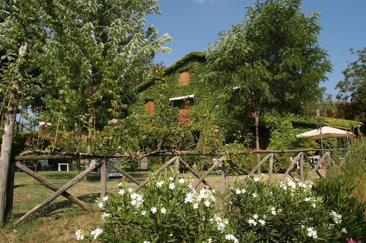 Quadrifogli - Vetralla - Villa