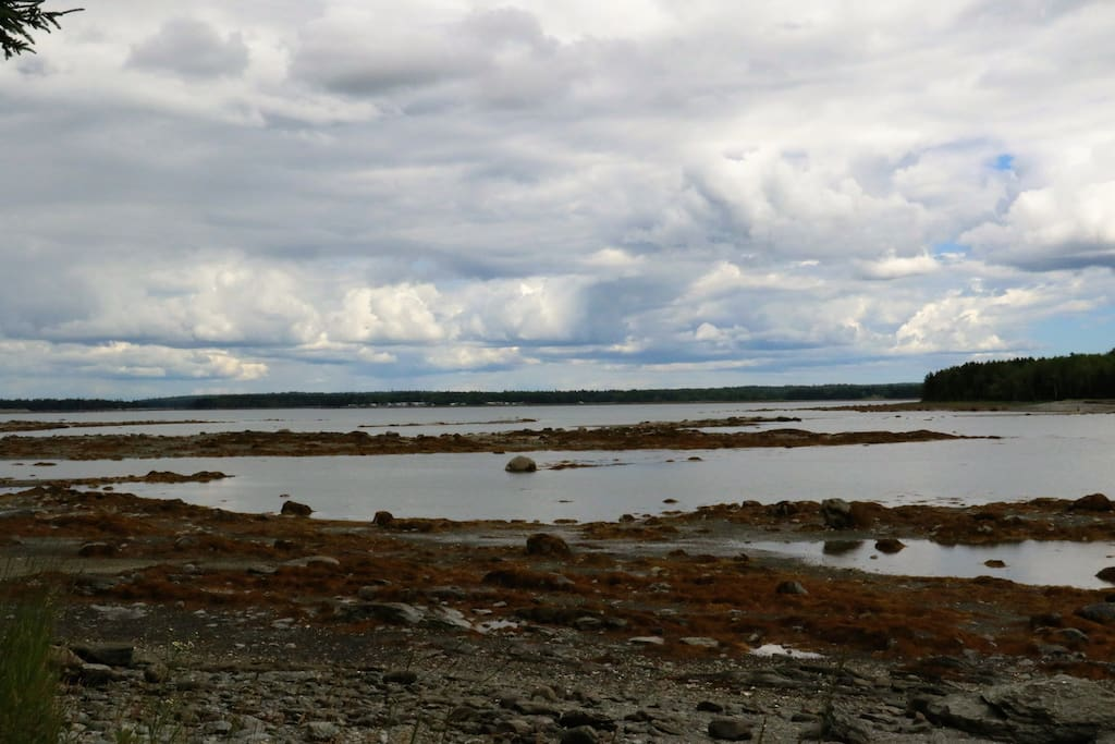 You can cross to the island during low tide. Give your self plenty of time to get back!