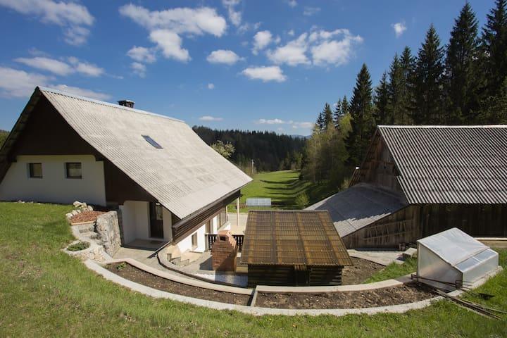 Farmhouse near Lake Bohinj, Lake Bled and Pokljuka