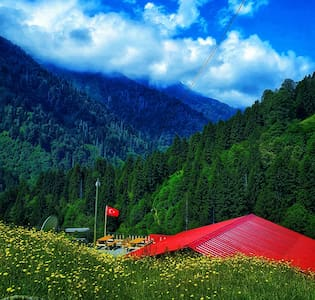 Doğa manzaralı hayallerinzi süsleyen keyifli tatil