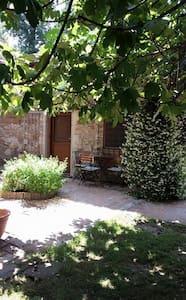 Casale del FICOGRANDE - B&B - Otricoli - Bed & Breakfast