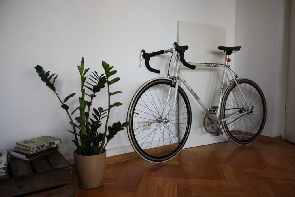 Bike and plants