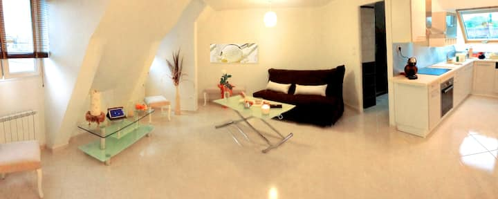 APPART'HOTEL61 (appartement VANILLE)