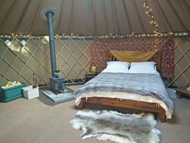 Luxury Yurt in Riverside Retreat - Brooksby - Yurt