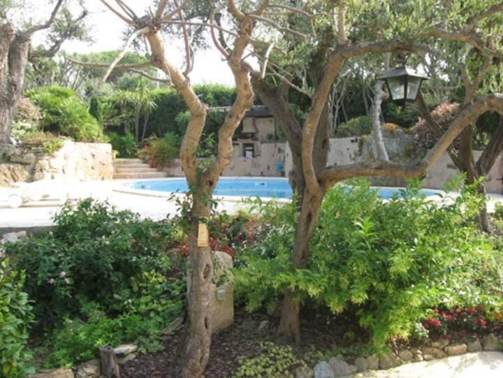 villa d'exception avec piscine , au bord de la mer