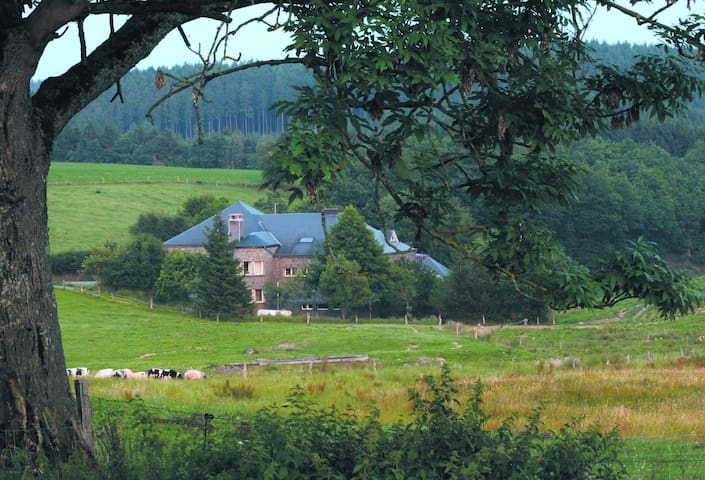 Auberge in oude melkfabriek, midden in de natuur. - La Roche-en-Ardenne - Sovesal