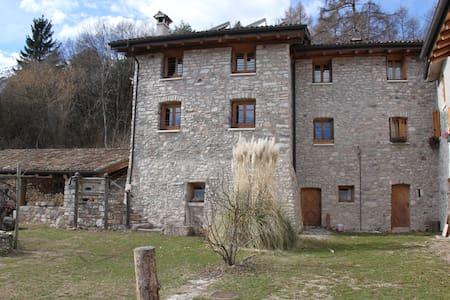 """Casale """"L'Edera"""", bioedilizia e tranquillità - Villa Lagarina - Hus"""