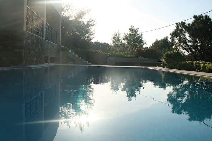 VILLA 190 m2 with olympic swimming pool 60 m2 - Theologos - Villa